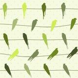 fåglar mönsan seamless vektortrådar stock illustrationer