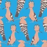 Fåglar mönstrar, konster Royaltyfria Bilder