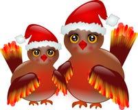 Fåglar med jultomten hatt Royaltyfri Foto