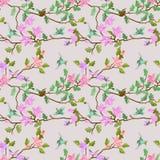Fåglar och filial med blommor Arkivfoton