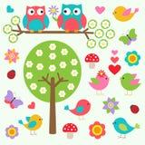 Fåglar och owls fjädrar in skogen Arkivbild