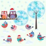 Fåglar och owls i vinterskog Arkivfoton