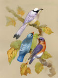 Fåglar på ett blomstra träd stock illustrationer