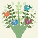 Fåglar på trädet Arkivfoto