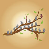 Fåglar på tree vektor illustrationer