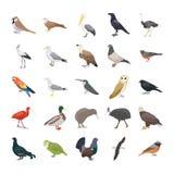 Fåglar sänker vektorsymboler royaltyfri illustrationer