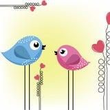 fåglar som älskar två Fotografering för Bildbyråer