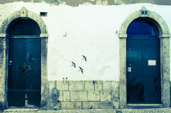 Fåglar som dras på väggen royaltyfri fotografi