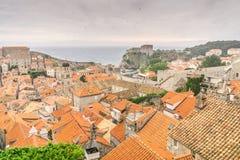 Fåglar som flockas över den Dubrovnik Olt staden på solnedgången royaltyfri foto