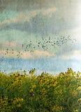 Fåglar som flyger över lösa blommor arkivbild
