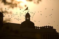 fåglar som flyger över slott Royaltyfri Bild