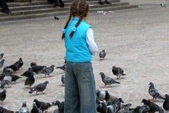 fåglar som matar flickan royaltyfri foto