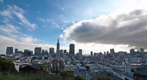 Fåglar synar beskådar av San Francisco royaltyfri foto