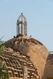 Fåglar tar över kyrkan i Barranco Fotografering för Bildbyråer