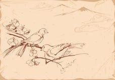 fåglar tecknad handillustration Royaltyfri Illustrationer