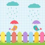 Fåglar under paraplyer Arkivbild
