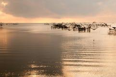 Fånga fisken med fisknätet på talanoien, pattalung Thailand Royaltyfria Bilder