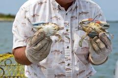 fånga krabbafiskaren hans holding Royaltyfri Fotografi