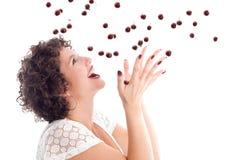 fångande Cherry royaltyfria bilder