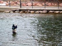 fångande fiskman Arkivbild