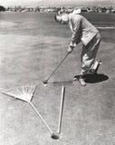 Fångat mellan en kratta och en arbeta i trädgården gaffel på den sättande gräsplanen Royaltyfri Foto