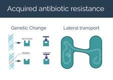 Fången antibiotisk motståndsvektorillustration Arkivfoton