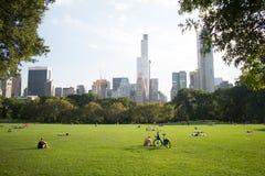 Fåräng i Central Park, Manhattan, New York City Arkivfoto