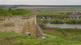 Får som betar längs floden och nära slottväggen lager videofilmer