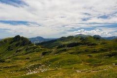 Får som betar på ett berg, betar, tuscany fotografering för bildbyråer