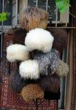 Fårhattar i marknad på den gamla staden, Icheri Sheher _ Arkivfoton