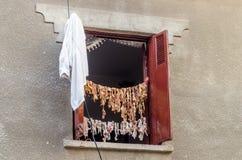 Fårinnardsuttorkning på klädstreck i solen Arkivbilder