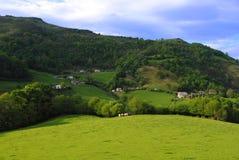 Fårlantbruk i Pyreneesna Royaltyfri Foto
