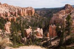 Fårliten vik, Bryce Canyon fotografering för bildbyråer