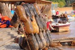 Fårskinnflotte i Yellowet River Royaltyfri Fotografi