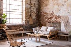 Fåtölj och trätabell i enkel vindinre med fönstret och den beigea soffan fotografering för bildbyråer