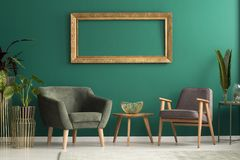 Fåtöljer i grön vardagsrum arkivfoton