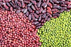 Fèves de mung, haricots d'adzuki et haricots nains rouges Photographie stock libre de droits