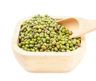 Fèves de mung superbes végétariennes saines d'ingrédient de nourritures Photographie stock libre de droits