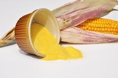 Fécule de maïs Photographie stock libre de droits