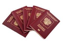Fédération de Russie de cinq passeports Photos libres de droits