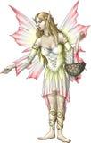 Fée de fleur de Gladioli Images stock
