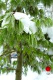 Fée de forêt d'hiver de Milou Images stock