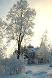 Fée de forêt d'hiver de Milou Image libre de droits