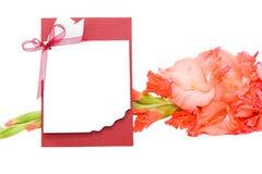 Félicitation et gladiolus Photographie stock libre de droits