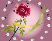 Rose et sterne Photographie stock