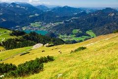 Férias da montanha no lago em Áustria Foto de Stock