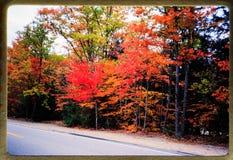Férias de Nova Inglaterra: excursões do curso 1970 e da família do vintage do ` s de 35 corrediças do milímetro Imagens de Stock