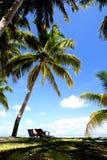 Férias de verão no console de Maldives Foto de Stock