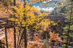 Férias do outono em Geórgia Foto de Stock Royalty Free
