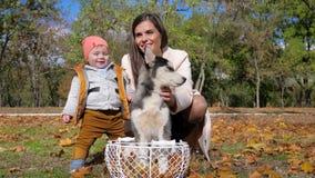 Férias em família felizes no parque do outono, no filho pequeno do abraço da jovem mulher e no cão ronco na cesta no fundo das fo filme